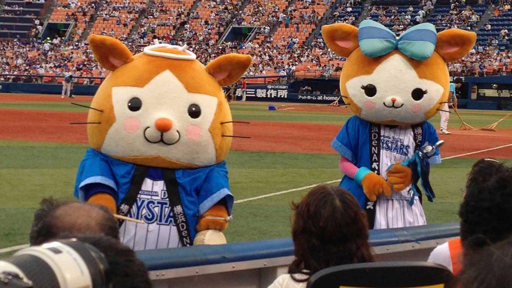 横浜スタジアム エキサイティング・シート2013